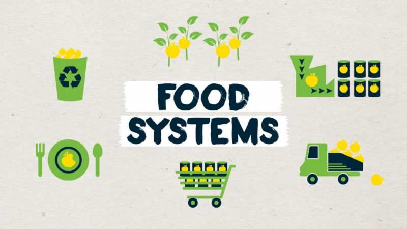 Biomimicry Food Systems Animation