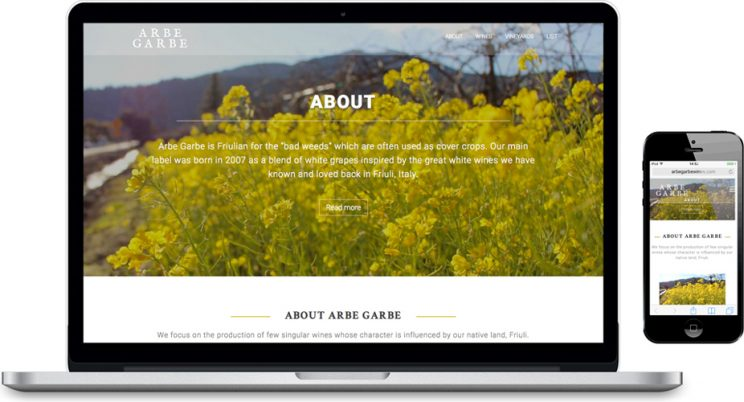Arbe Garbe Site (laptop & mobile)